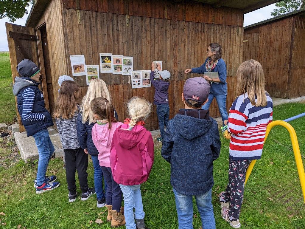 UWO-Kinderaktionstag-Wildbienen1